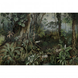 Fototapet jungle 2 DD110696 Livingwalls Walls by Patel