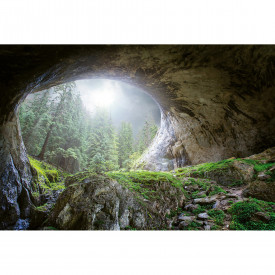 Fototapet Cave In The Forest DD118919 A.S. Création Designwalls